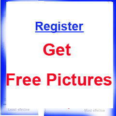 Get Free Pictures