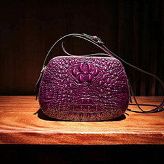 Crocodile Embossed Leather Crossbody Bag LH2684_5 Colors